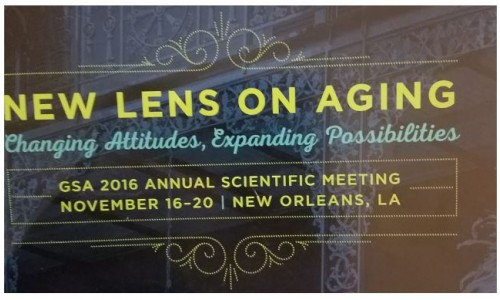 New Lens on Aging: Reflections on the Gerontological Society of America's Annual Scientific Meeting 2016